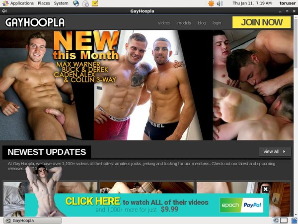 Fre Gay Hoopla Login And Password