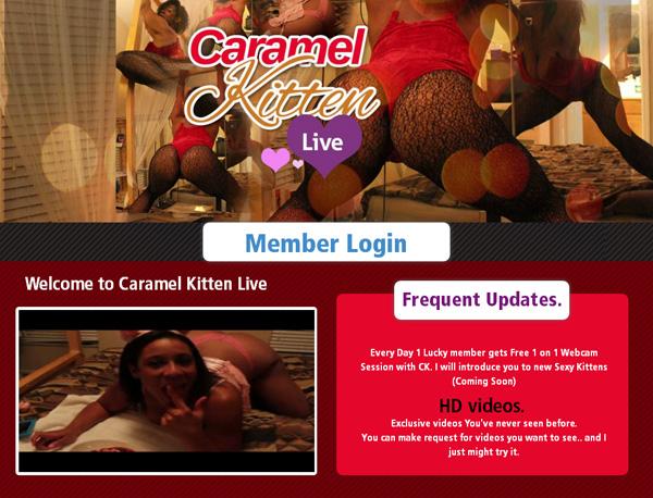 Live Kitten Caramel Promo